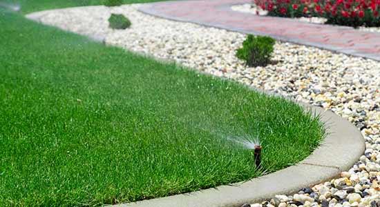 sprinkler head spraying water on edge of lawn