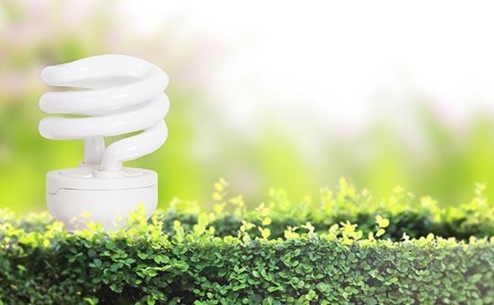 penergy efficient light bulbs