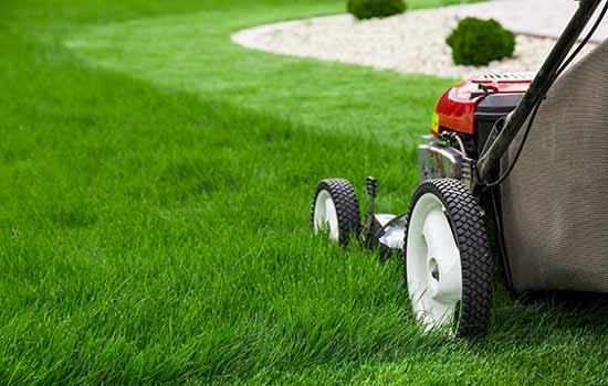 lawnmower on green grass