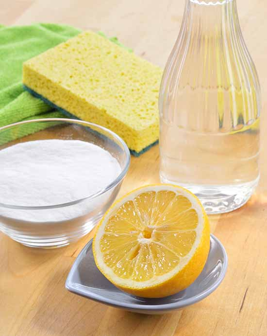 lemon wedge with salt, water and a kitchen sponge