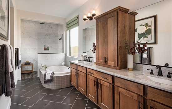 Owner's Bath in the Wonderment, Phoenix, AZ