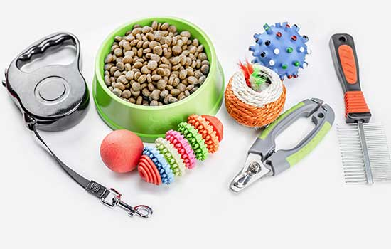 collection of pet supplies