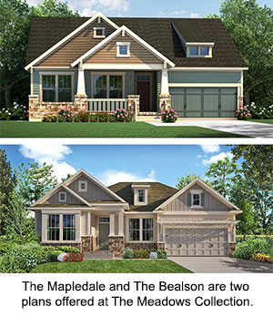 The Bealson and The Mapledale plans