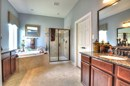 The Schumacher - Master Bath